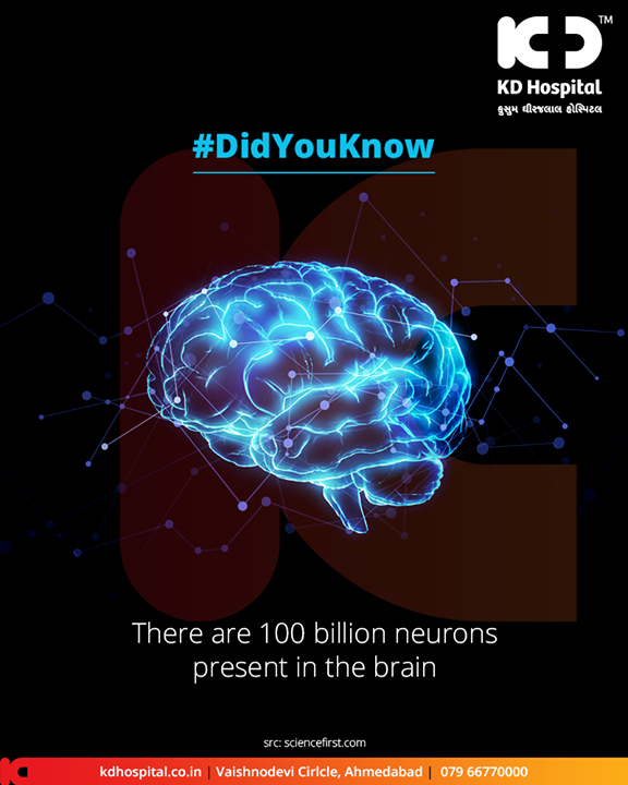 There are 100 billion neurons present in the brain.   #DidYouKnow #BrainFacts #KDHospital #GoodHealth #Ahmedabad #Gujarat #India