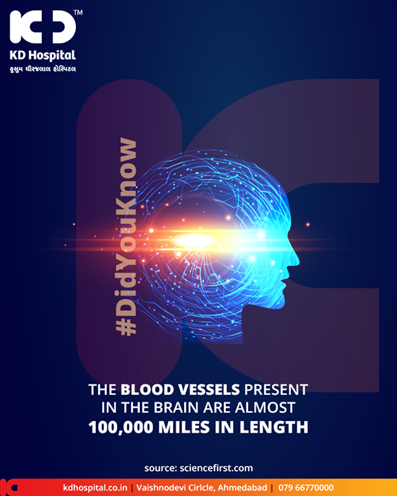 The blood vessels present in the brain are almost 100,000 miles in length  #DidYouKnow #BrainFacts #KDHospital #GoodHealth #Ahmedabad #Gujarat #India