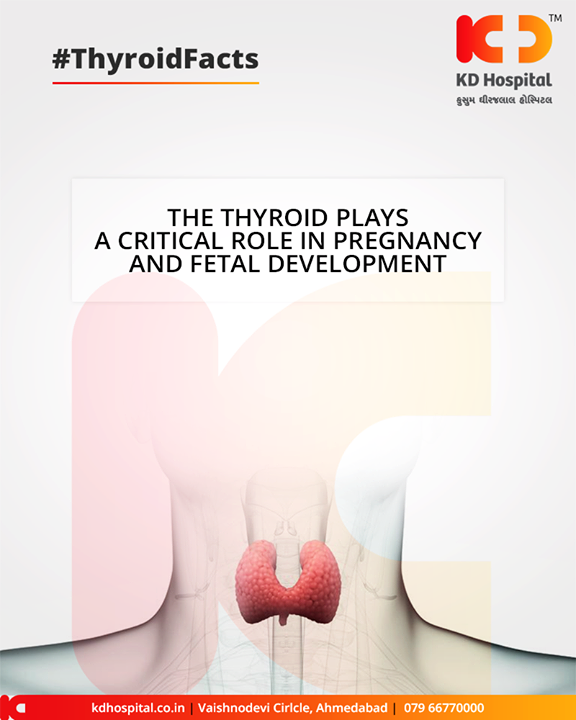 The thyroid plays a pivotal role in pregnancy! To meet the increased metabolic needs of a pregnancy, a mother's brain fuels the thyroid gland to produce more hormone.  #KDHospital #GoodHealth #Ahmedabad #Gujarat #India
