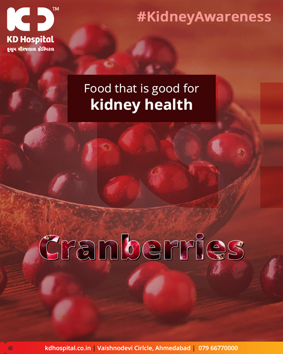 Eating cranberries can also protect your kidneys. Cranberries prevent the development and growth of ulcers and bacteria in your urinary tract and can help manage current bacteria/ulcers because they make the urine more acidic and help keep bacteria from attaching to the inside of the bladder.        #KidneyAwareness #KDHospital #GoodHealth #Ahmedabad #Gujarat #India