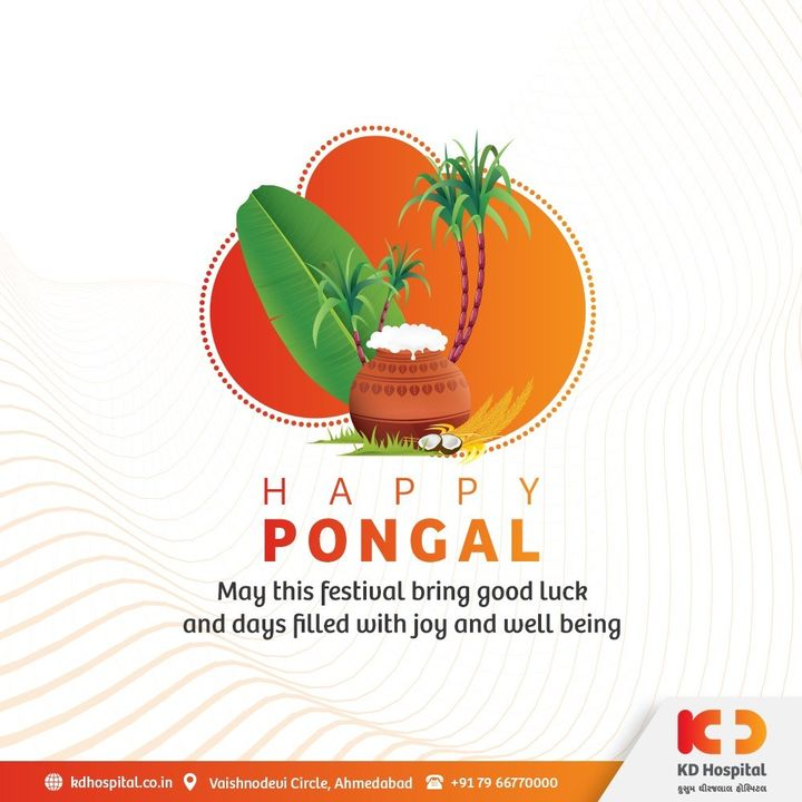 We express our gratitude to the Sun for igniting itself to save us. Happy Pongal, from our family to yours!  #KDHospital #Pongal #HappyPongal #Pongal2021 #StaySafe #StayHealthy #festival #Indianfestival #festivevibes #positivevibs #happiness #Diagnosis #Therapeutics #goodhealth #pandemic #socialmedia #socialmediamarketing #digitalmarketing #wellness #wellnessthatworks #Ahmedabad #Gujarat #India